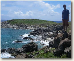 Buck Island, USVI hiking trail