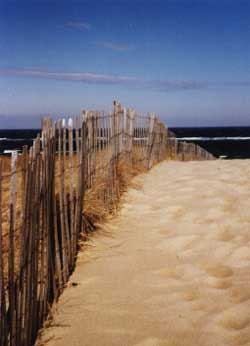 New England Yacht Charters sailing destination